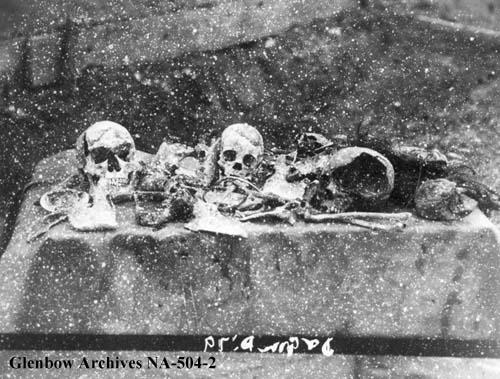 swiftfunner skulls.jpg